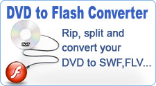 DVD to Flash