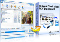flash video mx std