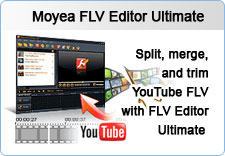 Split, merge, and trim YouTube FLV with FLV Editor Ultimate