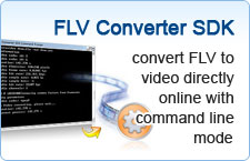 convert FLV to video directly online with command line mode