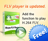 FLV player is updated. Add the function to play H.264 FLV.